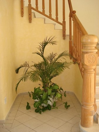 Hotel Flamingo Beach: Staircase