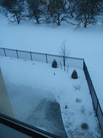 Hampton Inn & Suites New Hartford : Snowy Apple Orchard