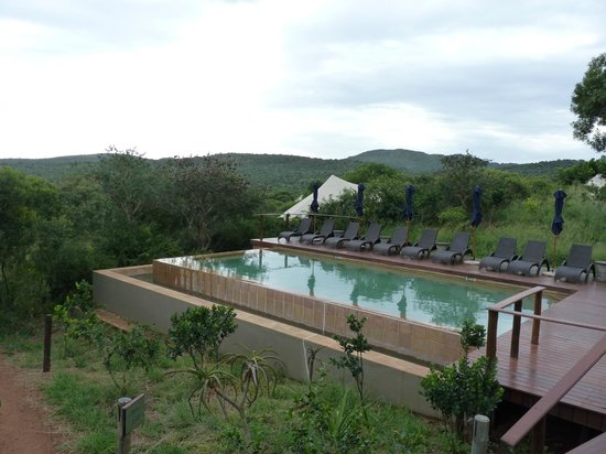 Thanda Safari: the pool