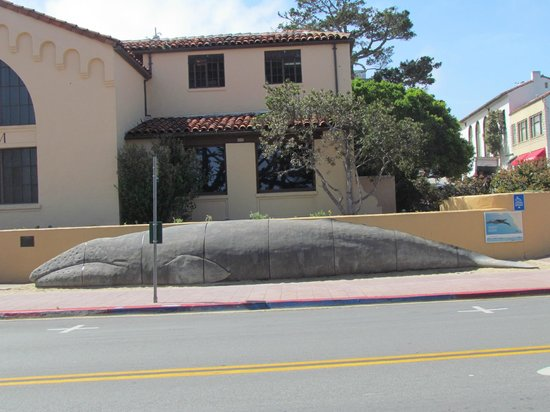 Pacific Grove Museum of Natural History: giant whale outside the museum