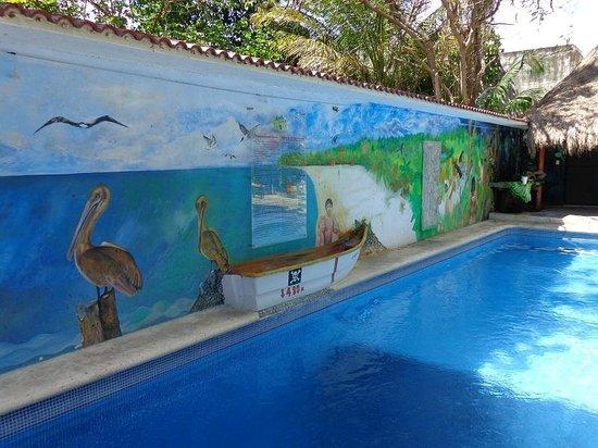Hotel Casa Tucan : piscine