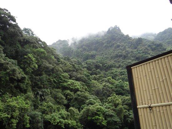 Wulai Hot Spring Resort: お部屋から見上げた山