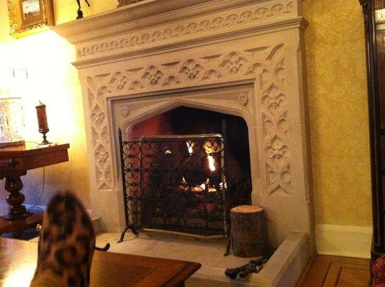 Glenapp Castle : Cheminée dans un des salons de l'hôtel