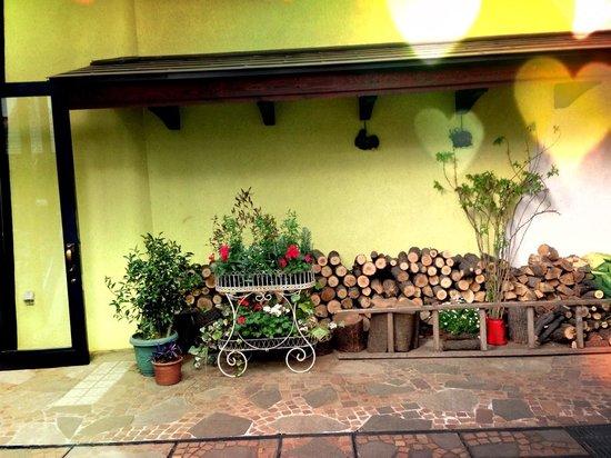 Musée Ghibli : 北欧の国のようなアリエッティが隠れていそうな素敵な場所おトイレが今までで一番でした。