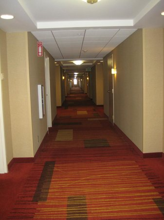 Courtyard by Marriott Middletown: Hallways