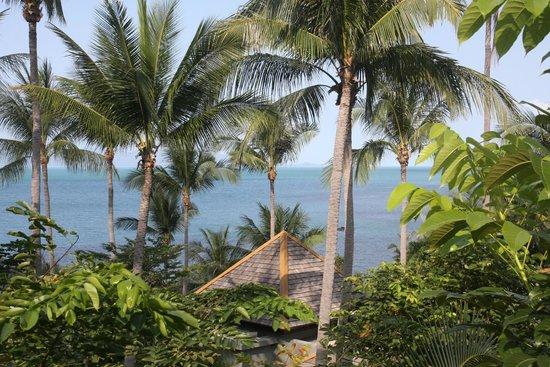 فور سيزونز ريزورت كو ساموي: View from My Room