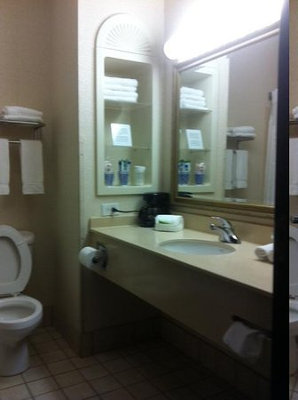 Holiday Inn Express Hotel & Suites - Nacogdoches: Bathroom
