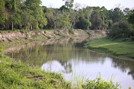 Kaziranga National Park, Ινδία: Tributary of Brahmaputra  @ Kaziranga