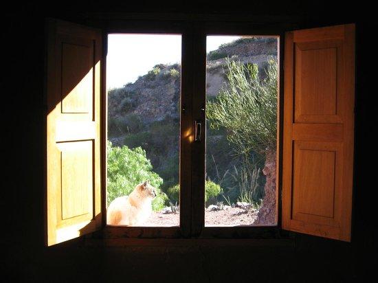 Cerro Chico: Una de las ventas laterales de la habitación