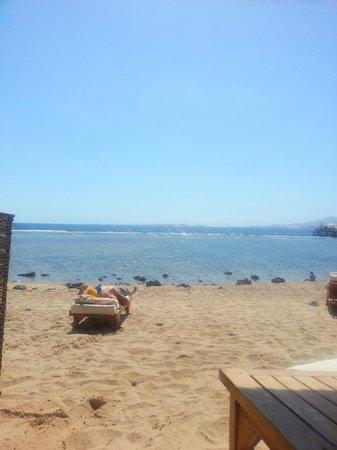 Cleopatra Luxury Resort Sharm El Sheikh: Surreal beach area