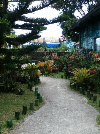 Casa de Carlo: Pathway