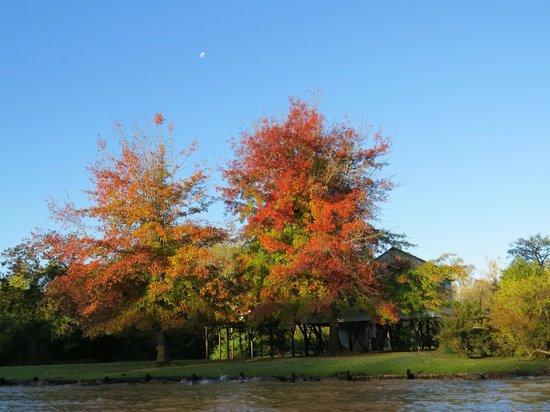 IIncreíbles colores otoñales en el Delta del Tigre
