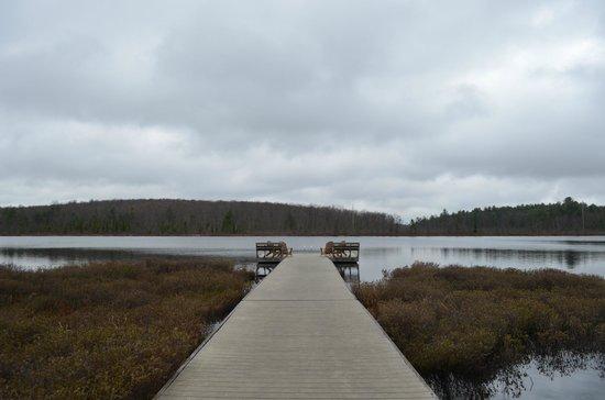 The Lodge at Woodloch: Lake dock