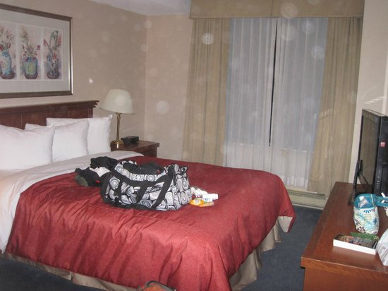 Les Suites Hotel Ottawa: dated bedspread