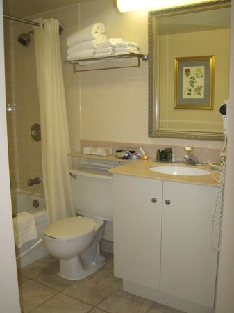 Les Suites Hotel Ottawa: clean but old bathroom