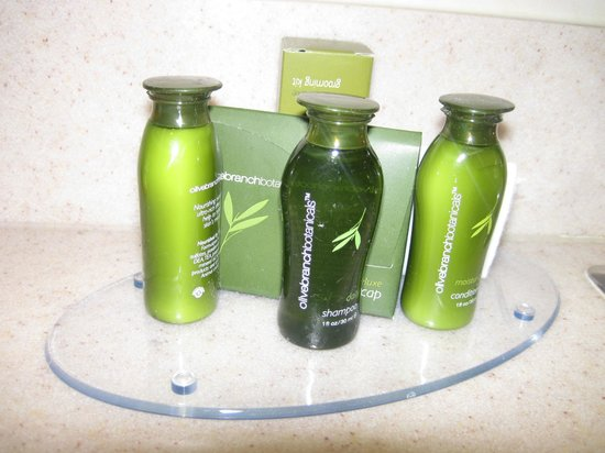 Les Suites Hotel Ottawa: bathroom amenities