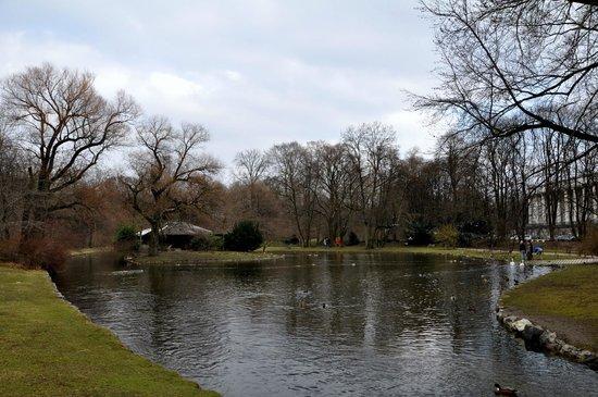 Englischer garten picture of english garden munich for Englischer garten