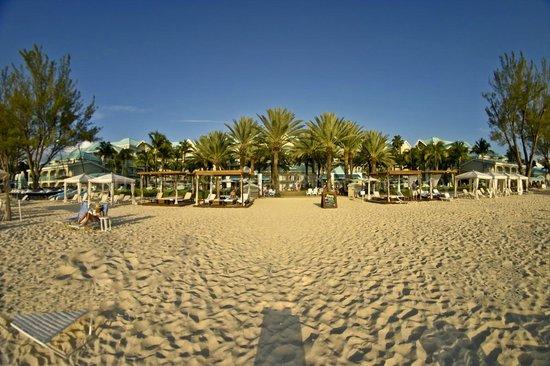 The Westin Grand Cayman Seven Mile Beach Resort & Spa: resort from beach