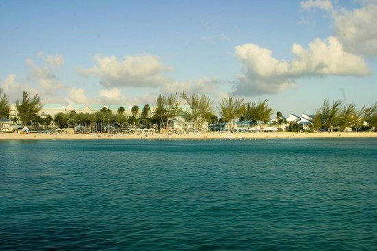 The Westin Grand Cayman Seven Mile Beach Resort & Spa: view of resort from sunset cruise