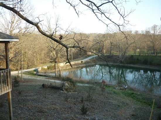 Mansfield Woods : デッキからの眺め