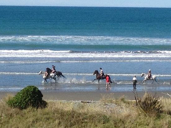 Gore Bay Lodge: horses on the beach, spectacular sight