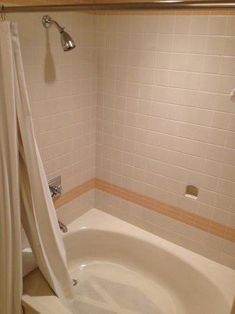 Cincinnatian Hotel: spacious soaking tub & shower