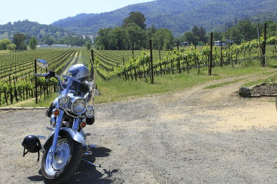 Rivino Winery: a fun ride, but time to relax