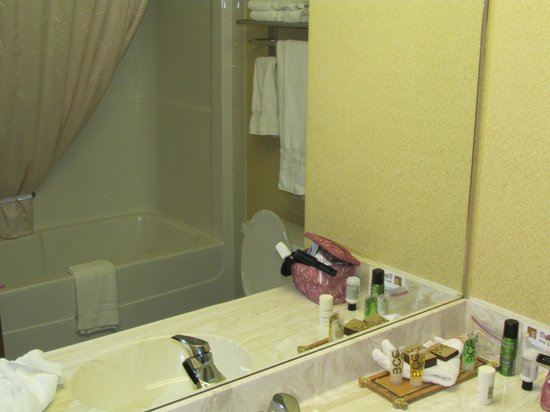 Merit Hotel & Suites: bathroom toiletries