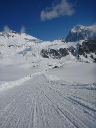 Grindelwald, Schweiz: Racing down