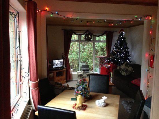 Lindale Holiday Park: Christmas in 'Birch' (Our own decorations)