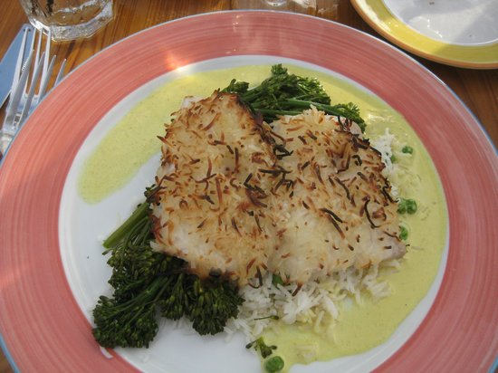 coconut crusted mahi mahi - amazing - Picture of Morada Bay ...