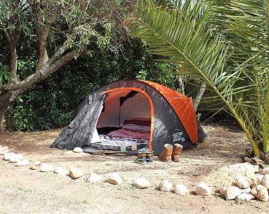 Jah Shaka Surf and Kite Lodge: Dedicated camping area