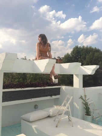 Condesa Haus : roof top