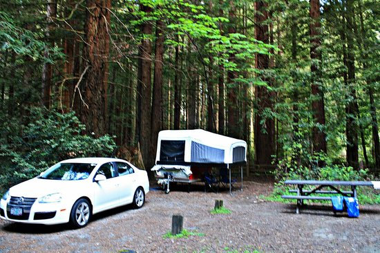 Tenting It In Albee Creek Campground Picture Of Humboldt