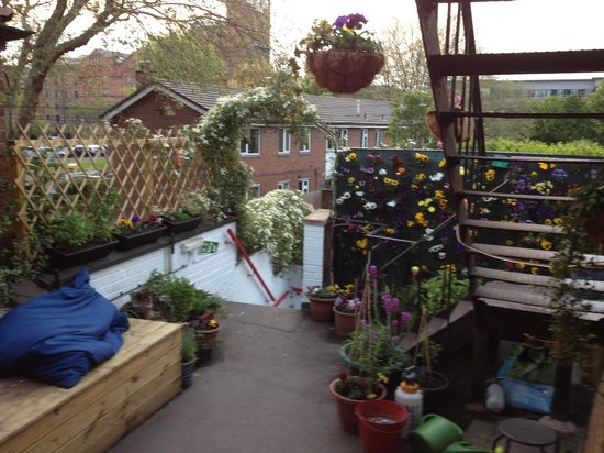 Chester Backpackers : rooftop terrace