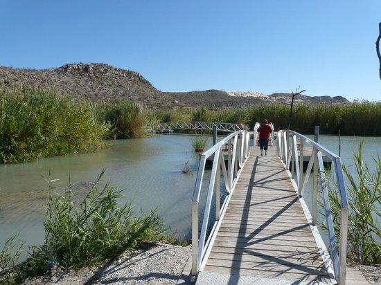 Rio Grande Village Nature Trail: The start of the trail.