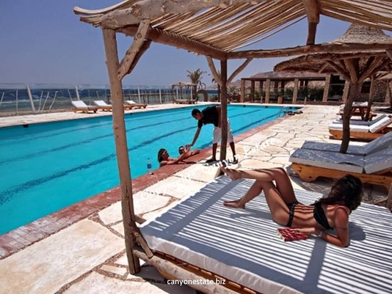 Canyon Estate Dahab Beach Hotel Residence : pool
