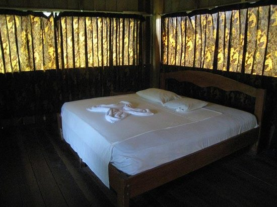Amazon Rainforest Lodge: Room
