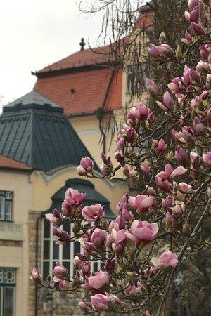 Frühling und Historische Bauten