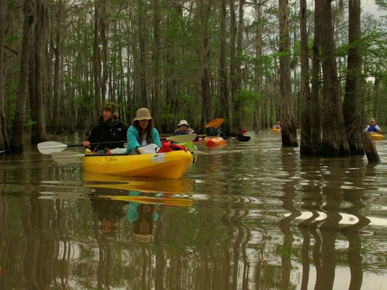 Bayou Teche Experience : Cory and Connie guiding Gravenburg Trail paddle