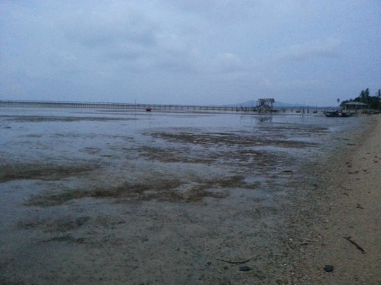 Marjoly Beach Resort : Beach