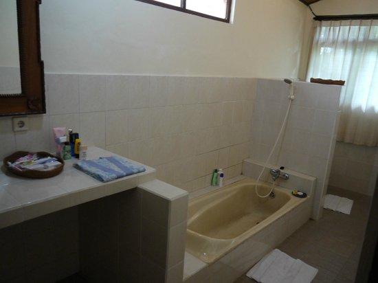 Kebun Indah: bathtubnya kelihatan dekil tapi ternyata itu memang motifnya :D