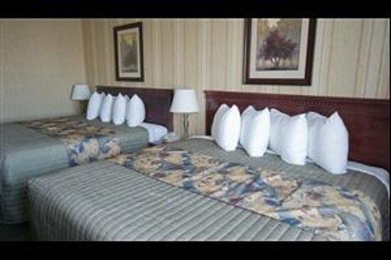 Maple Meadows Country Inn Bed And Breakfast Grande Prairie
