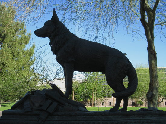 Wesley Bolin Memorial Plaza: To the canines