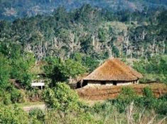 Warili Lodge