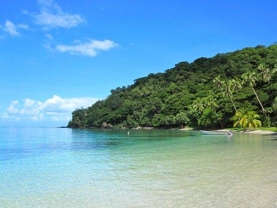 Paradise Taveuni: beach