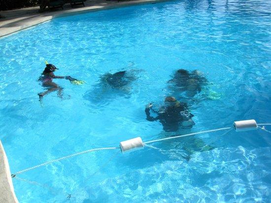 Paradise Taveuni: pool splash - dive