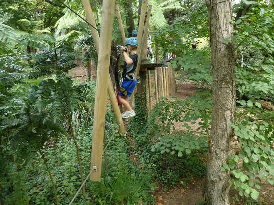 Trees Adventure: rope and pole activity
