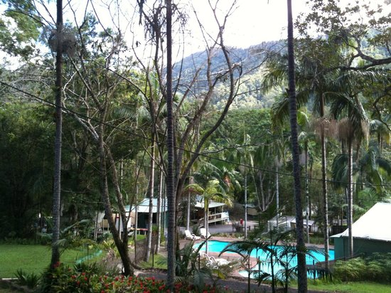 Mt Warning Rainforest Park: Pool area