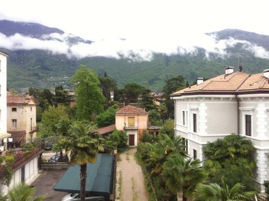 Hotel Olivo : dalla finestra dell'albero